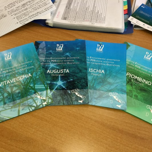 "Milestone action A.3 achieved: ""Transplants of Posidonia oceanica: analysis of case studies"""