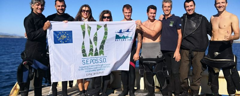 """Reached milestone for Action B.2: """"Completion of field activities on Posidonia transplant performance"""""""
