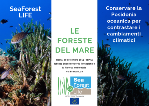 Life SEPOSSO participates at the first conference of Life SeaForest project