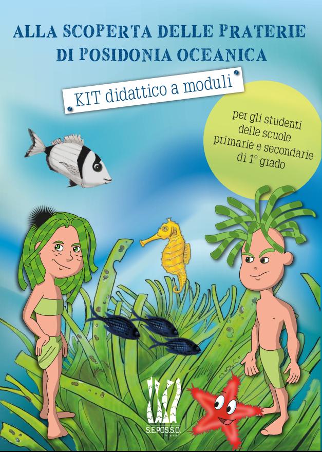 Presentation of SEPOSSO Educational Kit