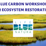 """Participation in the """"Training workshop in coastal wetlands and seagrass meadows restoration, based in Blue Carbon actions"""" workshop"""
